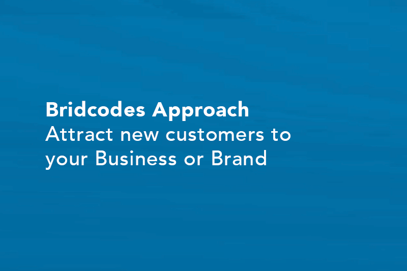 bridcodes-approach